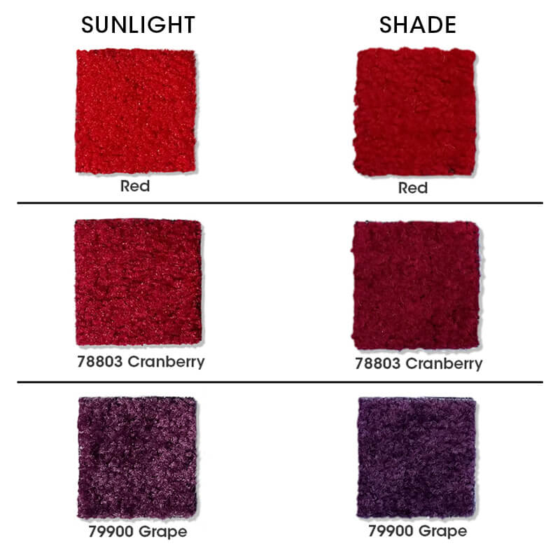 Main Carpet Swatches Color