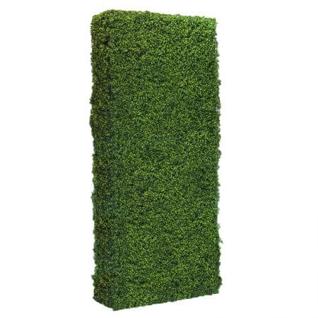 4 by 8 foot Hedge Wall