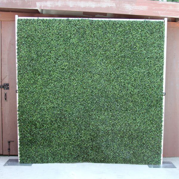 A Hedge Roll backdrop