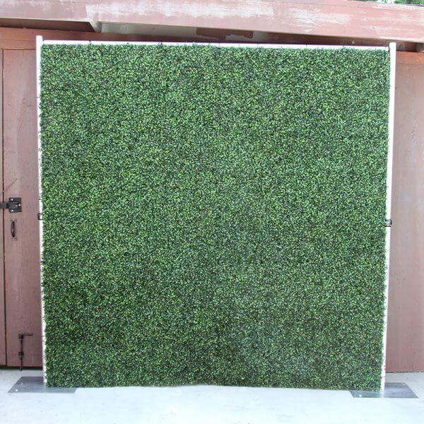 Boxwood Hedge Roll Mat 8 X8 Rental Step And Repeat La