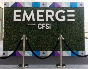 We installed and fabricated this stylish hedge wall display using three 8 'x 4' hedges.