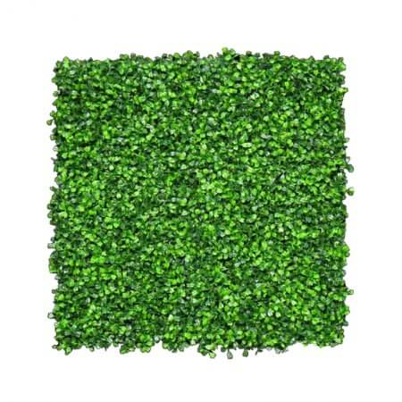 Front of 12 by 12 inch hedge wall foliage squares