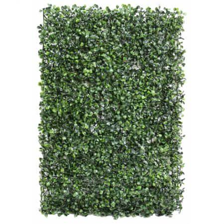"Single hedge square 26""X17"""