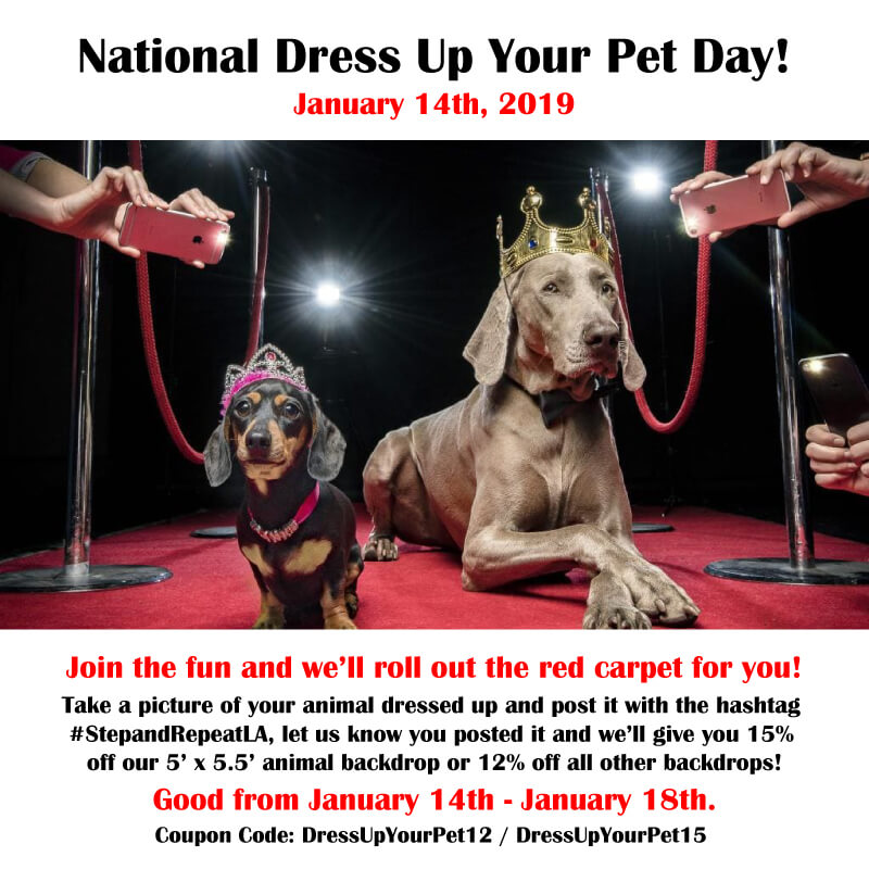 Dress up your pet and get discounts!