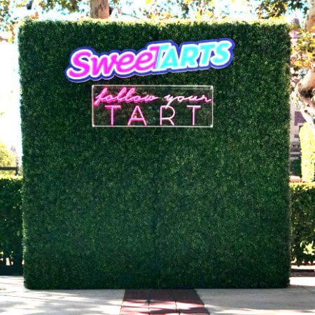 Sweet Tart hedge wall with custom cut out logo and neon lights!