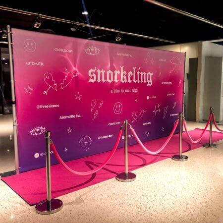 pink carpet and pink velvet ropes