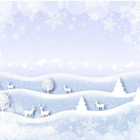 Holiday rental backdrops for only $75.00